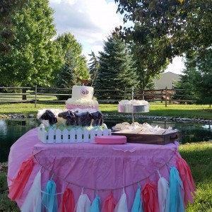 Hunters & Jumpers & Private Equine Events - Pony Party in Westerville, Ohio