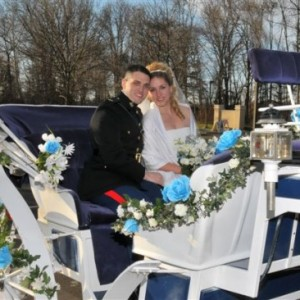 Equishare Horse Drawn Carriages - Carnival Rides Company / Outdoor Party Entertainment in Morristown, New Jersey
