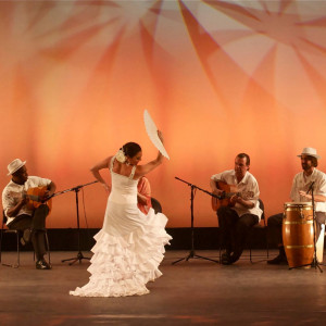 Esencia Flamenco Dance and Music Co. - Flamenco Group in San Diego, California