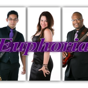 EUPHORIA Band - Chicago - Wedding Band in Chicago, Illinois