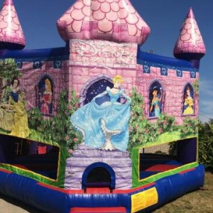 Evelyns party rentals - Party Inflatables / Outdoor Party Entertainment in Port Hueneme, California