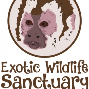 Exotic Wildlife Sanctuary - Animal Entertainment in Brookfield, Illinois