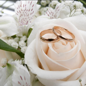 Exquisite Events and Coordination - Wedding Planner / Wedding Services in Norwalk, California