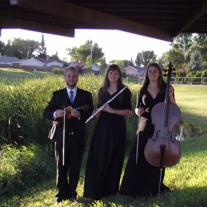 Exquisite Melodies - Classical Ensemble / Classical Duo in Regina, Saskatchewan