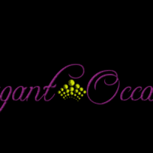 Extravagant Occasions, LLC - Event Planner / Party Decor in Hyattsville, Maryland