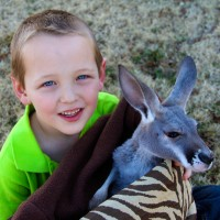 Extreme Animals - Petting Zoos for Parties / Children's Party Entertainment in Oklahoma City, Oklahoma