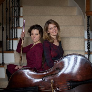 Extreme Duality - Classical Duo in Lansing, Michigan