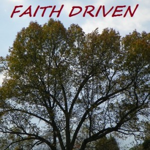 Faith Driven - Christian Band in Colona, Illinois