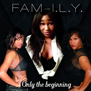 Fam-i.l.y. - R&B Group / Cover Band in Madison, Wisconsin