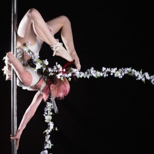 Featherpistol - Aerialist / Acrobat in San Francisco, California