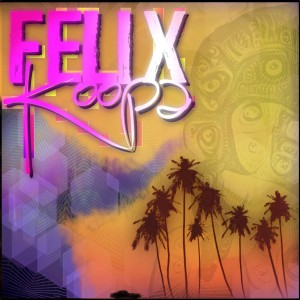 Felix Koopa - Funk Band / Indie Band in New Orleans, Louisiana