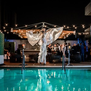 Firestorm Talent and Entertainment Premier - Event Planner / Acrobat in Los Angeles, California