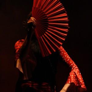 Flamenco De Perfil