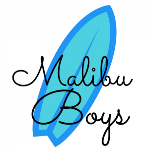 Malibu Boys - Cover Band / Beach Boys Tribute Band in Los Angeles, California