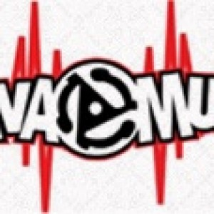 Flava Dj's - DJ in New York City, New York