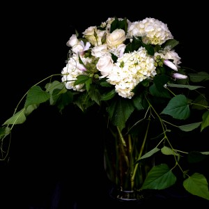 Fleurette - Wedding Florist / Wedding Services in St Louis, Missouri