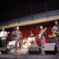 Flex Band - Wedding Band / Party Band in Durham, North Carolina