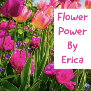 Flower Power By Erica - Event Florist / Party Decor in Sharonville, Ohio