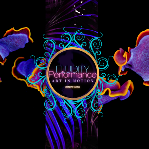 Fluidity Performance - Corporate Entertainment in Charlotte, North Carolina