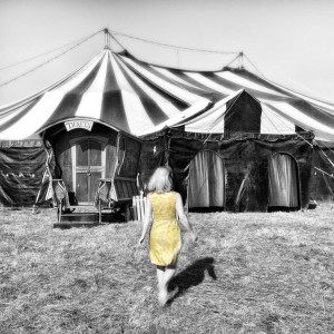 Flynn Creek Circus LLC - Traveling Circus in Mendocino, California