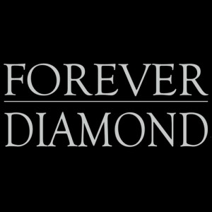 Forever Diamond - Neil Diamond Tribute in Mississauga, Ontario