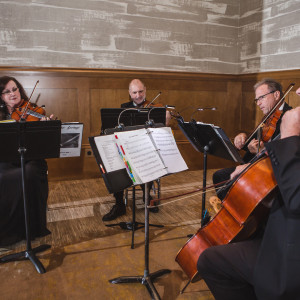 Forte Strings Quartet - String Quartet / Wedding Entertainment in Fort Worth, Texas