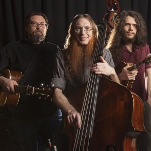 Fox N Hounds - Bluegrass Band / Bassist in Columbus, Ohio