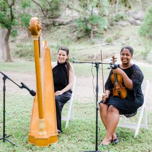 Harp of the Hills - Harpist in Kyle, Texas
