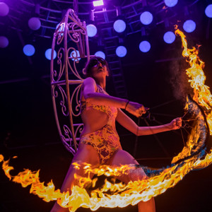 Fresh kiwi performance - Hoop Dancer / Fire Eater in Dallas, Texas
