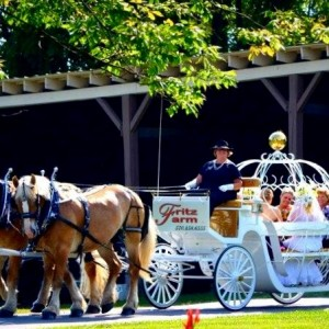 Fritz Farm Carriage Service - Horse Drawn Carriage / Princess Party in Williamsport, Pennsylvania
