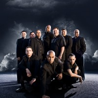 Son Salvaje - Salsa Band / Latin Band in Tampa, Florida