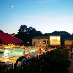 Fun Flicks Outdoor Movies - Party Rentals in Virginia Beach, Virginia