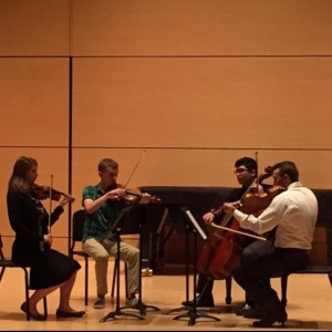 Ember Island String Quartet - String Quartet in San Marcos, Texas