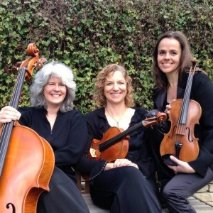 Garden Strings - String Quartet in Oakland, California