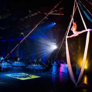 Gemini Trapeze - Circus Entertainment / Acrobat in Boston, Massachusetts