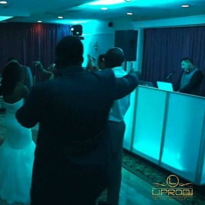 LIPRODJ - Mobile DJ / Outdoor Party Entertainment in West Babylon, New York
