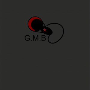 GetMoneyyBoyysRecords - Hip Hop Artist / Hip Hop Group in Lufkin, Texas