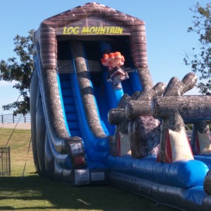 Giant Inflatable Slides - Party Inflatables / Children's Party Entertainment in Houston, Texas