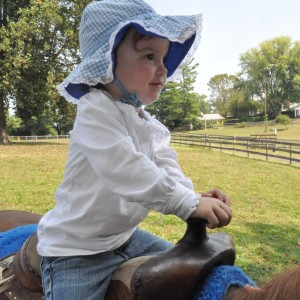 Giddy-up! Pony Rides! - Pony Party / Petting Zoo in Annapolis, Maryland