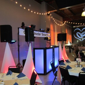 Gold Medal Sound - Wedding DJ in Neenah, Wisconsin