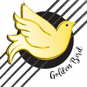 Golden Bird - Acoustic Band in Northampton, Massachusetts