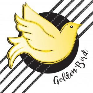Golden Bird - Acoustic Band in Northampton, Massachusetts