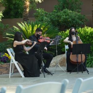 Golden Strings - String Quartet in Novi, Michigan