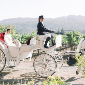 Grand Carriages - Horse Drawn Carriage / Limo Service Company in Livermore, California