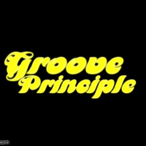 Groove Principle - Cover Band in Orlando, Florida