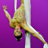 Grooving-Art - Circus Entertainment in Fort Lauderdale, Florida