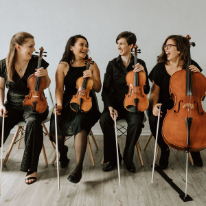 Boom Island String Quartet - String Quartet in St Paul, Minnesota