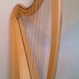 Hannah the Harpist - Harpist in Elk River, Minnesota