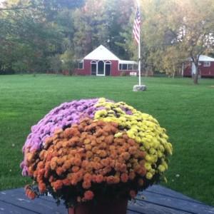 Hannon's Camp America - Venue in College Corner, Ohio