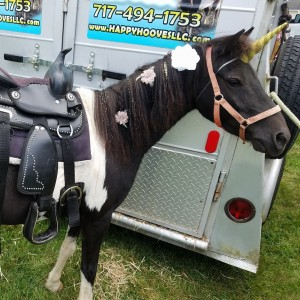 Happy Hooves, LLC - Pony Party in Greencastle, Pennsylvania